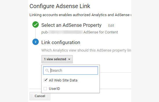 selezionare-vista-google-analytics-da-collegare-ad-adsense