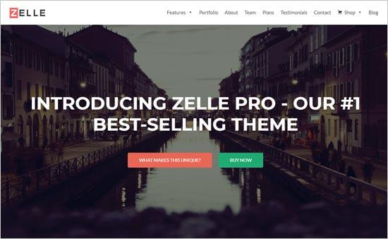 Zelle Pro Theme
