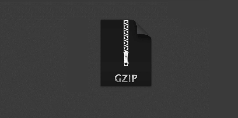 come-abilitare-la-compressione-gzip-in-wordpress