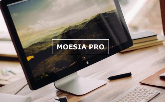 Moesia Pro Businness