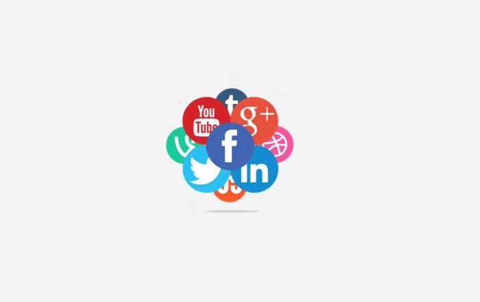 social-media-plugin-wordpress