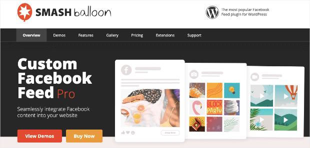 Smash Balloons Homepage Min