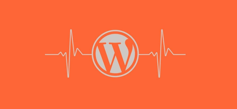come-ottenere-informazioni-di-sistema-per-il-tuo-sito-wordpress