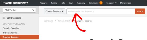 Semrush Search Terms