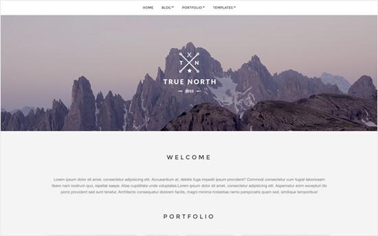 Truenorth Portfolio Theme